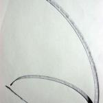 Sem título - 2008 - nanquim sobre papel - 42 x 29,5 cm
